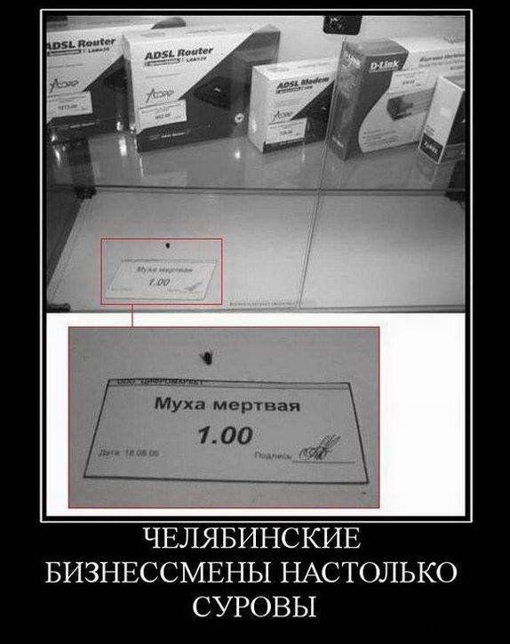 Челябинские бизнесмены настолько суровы. Муха мертвая. 1 рубль