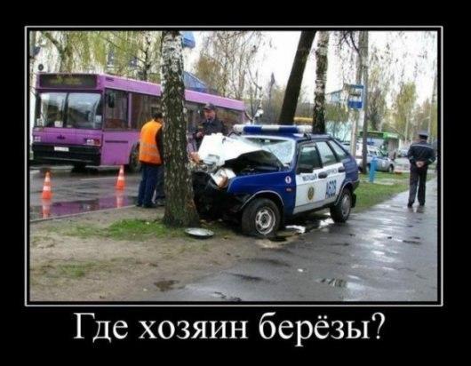 Авария автомобиля милиции. Удар в дерево
