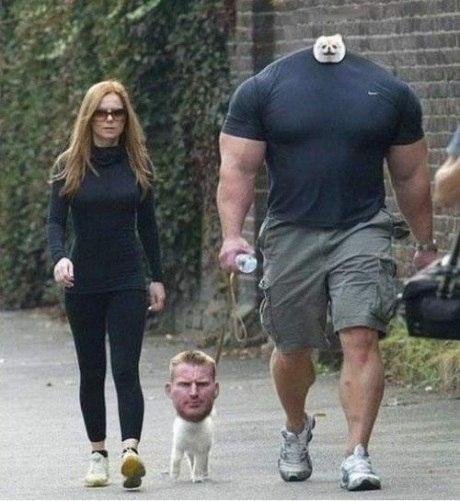 Прогулка с собачкой. Собачья голова на плечах
