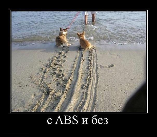 Собачка с ABS и собачка без ABS. Следы на песке