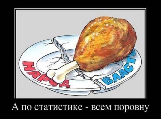 А по статистика всем поровну.. Кусок курицы на тарелке. Народ и власть