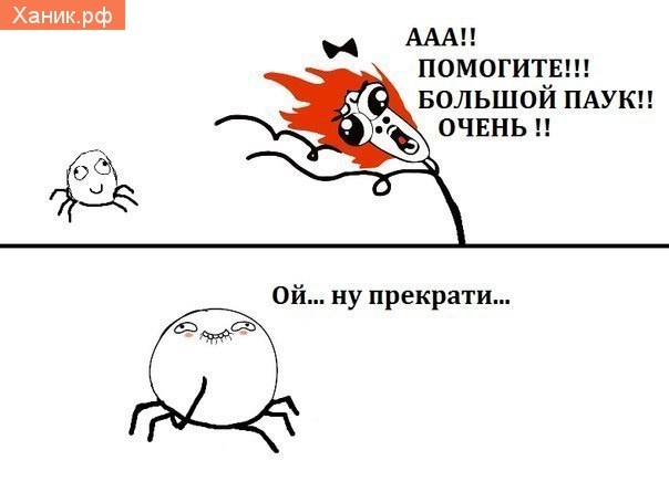 ААА!! Помогите!! Большой паук!! Очень!! Ой ну прекрати..
