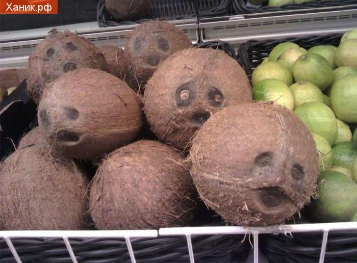 Видимо кокосам надоело там лежать