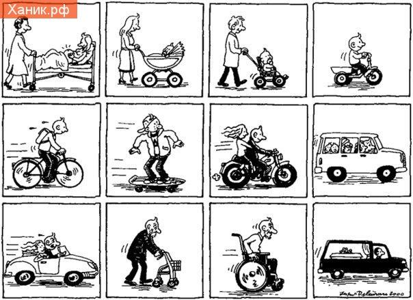 Вся жизнь на колёсах. Коляска, велосипед, скейтборд, автомобиль, мотоцикл, кабриолет, коляска, катафалк