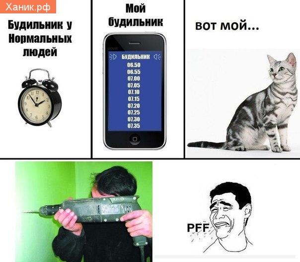 Будильник у нормальных людей и мой будильник.. Кот, Перфоратор. PFFF pFF