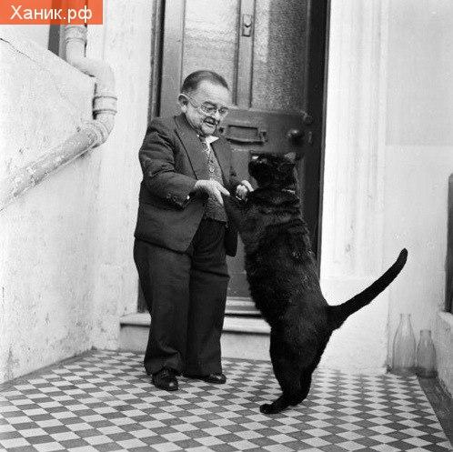 Самый маленький человек на земле и его кот. Фотография