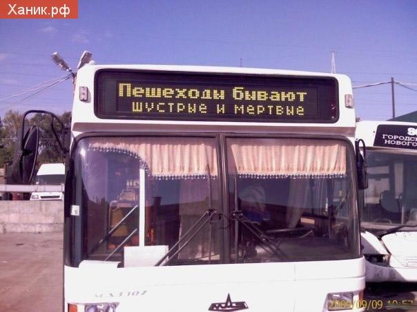 Надпись на автобусе. Пешеходы бывают шустрые и мертвые