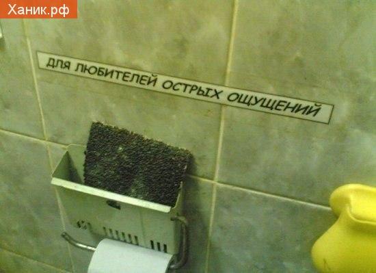 Туалетная бумага из нождачной. Для любителей острых ощущений