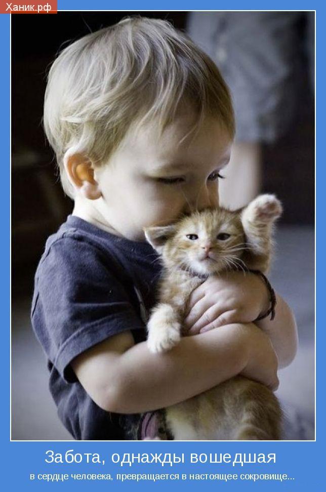 Мотиватор. Ребенок держит обнимает котенка. Забота, однажды вошедшая в сердце человека, превращается в настоящее сокровище...