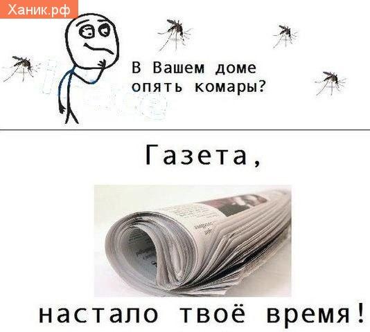 В вашем доме опять комары? Газета, настало твое время! Комикс