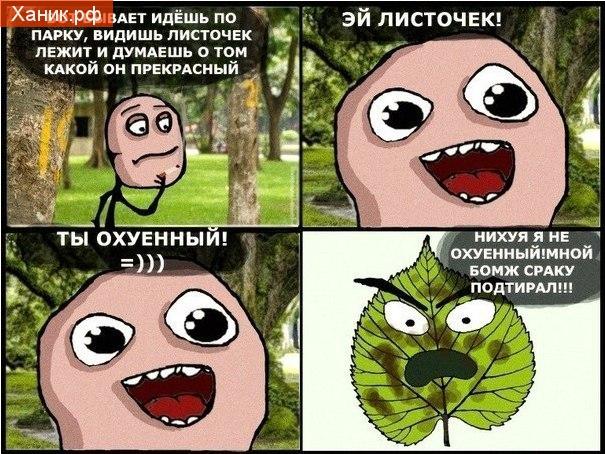 Бывает идешь по парку, видишь листочек и думаешь о том какой он прекрасный. Эй листочек, ты прекрасный. Нет, мной бомж сраку вытирал