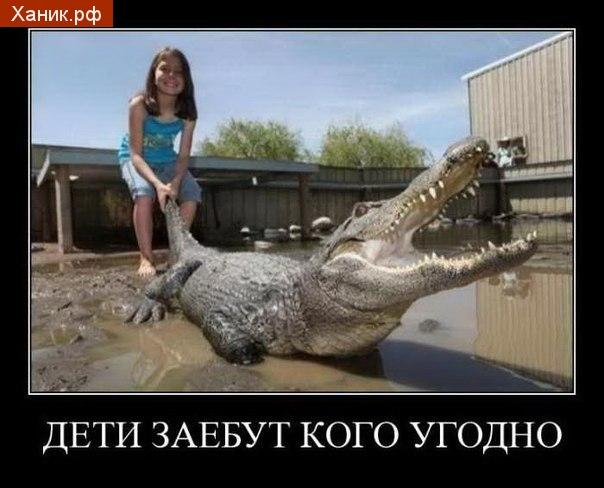 Дети заебут кого угодно. демотиватор. Девочка тащит крокодила за хвост