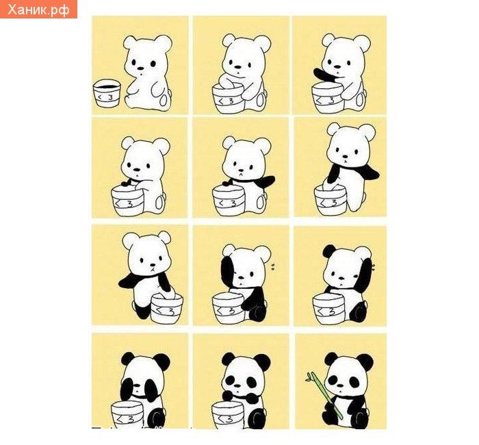 Панда раскрашивает себя. Комикс