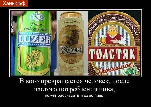 Демотиватор. В кого превращается человек, после частого потребления пива может рассказать и само пиво! Козел. Толстяк. Лузер