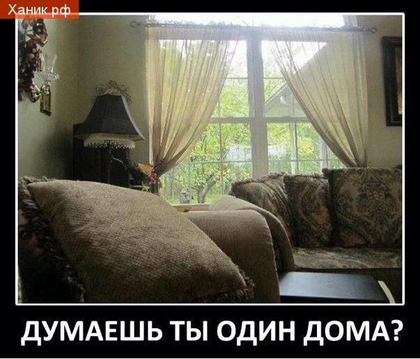 Думаешь, ты один дома? демотиватор