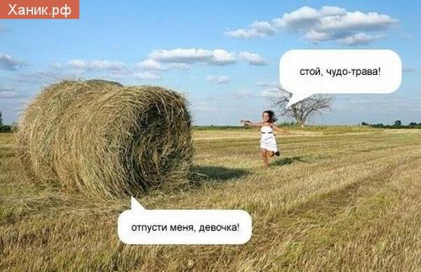 Стой, чудо-трава! Отпусти меня, девочка!