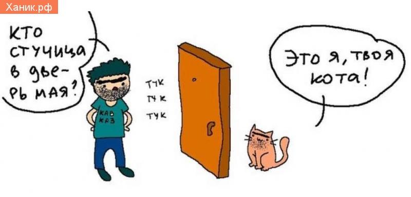 Кто стучится в дверь мая? Тук-тук. Это я твоя кота!