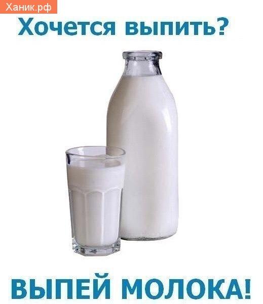 Хочется выпить? Выпей молока! Молоко