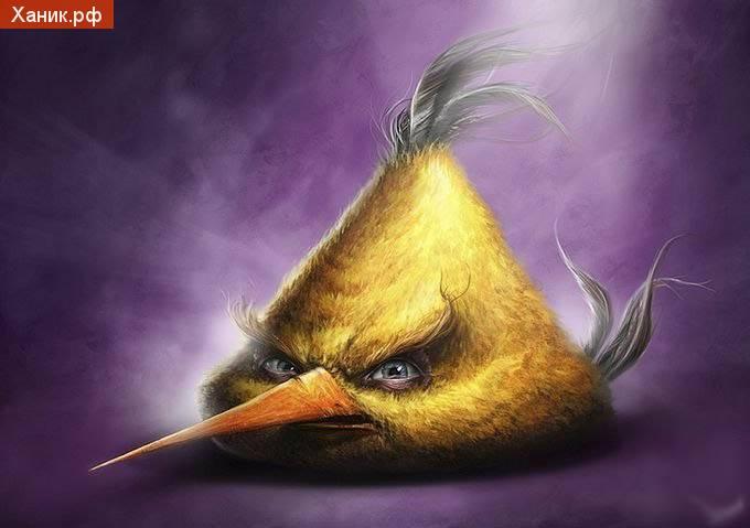 Angry birds. Желтый