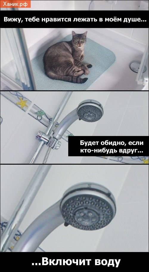 Вижу тебе нравится лежать в моем душе. Будет обидно, если кто-нибудь вдруг включит воду..