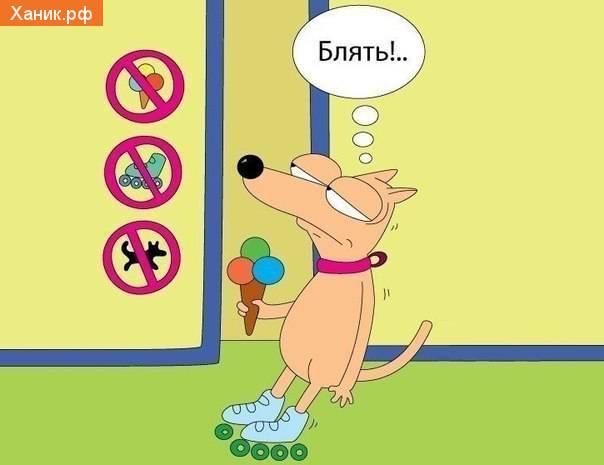 Вход на роликах, с собакой и мороженным запрещен! Блять!