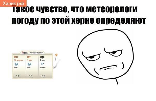 Яндекс. Погода. Такое чувство, что метеорологи погоду по этой херне определяют