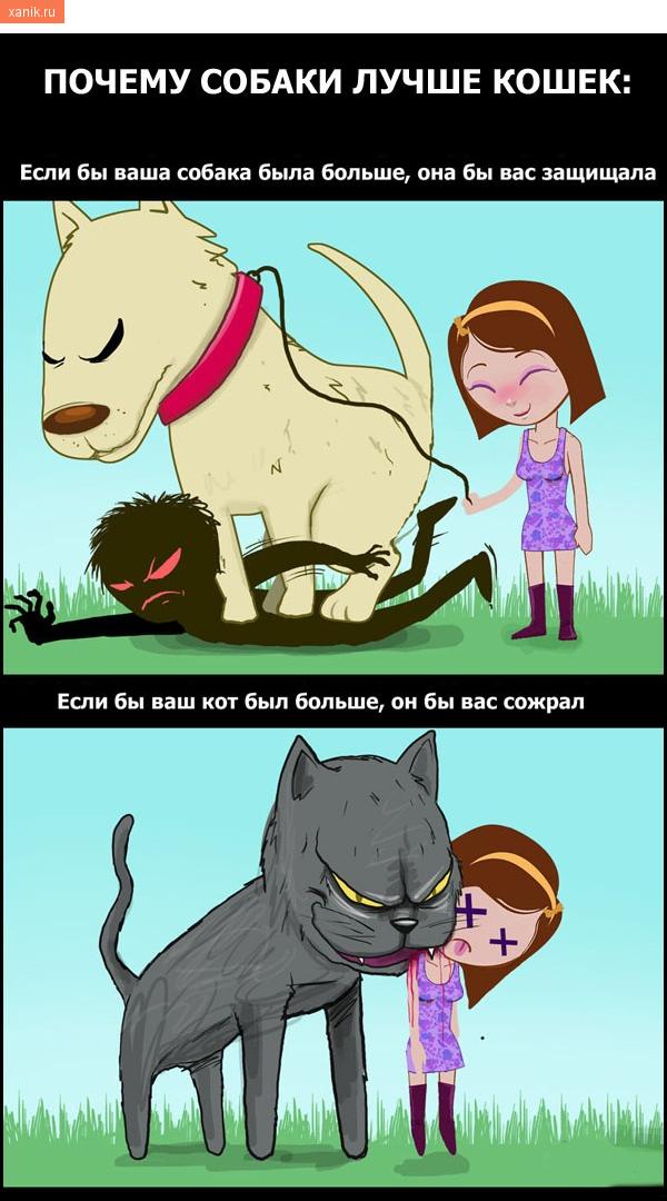 Почему собаки лучше кошек: если б ваши собака была больше, она бы вас защищала. Если б ваши кот был больше, он бы вас сожрал!
