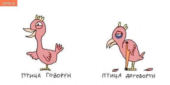 Птица говорун, птица договорун