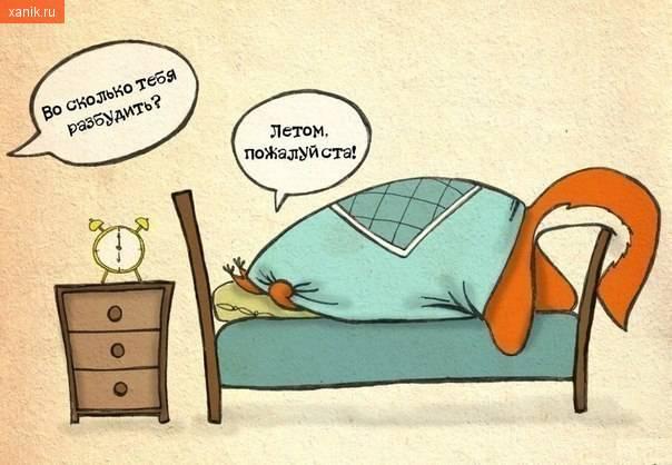Во сколько тебя разбудить? Летом, пожалуйста!