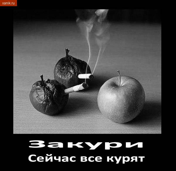 На примере яблок. Закури, сейчас все курят..