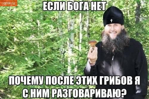 Если Бога нет, то почему после этих грибов я с ним разговариваю?
